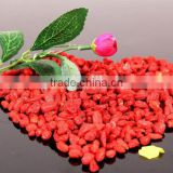 Pure natural organic Wolfberry Extract Powder