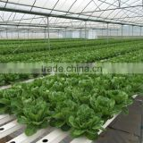PVC Hydroponic Channels 118mmx50mm for crops