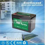 EverExceed deep cycle deep cycle solar battery 12v 200ah