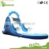 Dreamland water and dry slide jumpers Inflatable Pool & Double Water Slide                                                                                         Most Popular