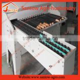 Chicken egg classifying machine/groose egg weight grader/automatic duck egg grading machine