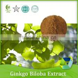 alibaba supplier health care product organic ginkgo biloba extract powder