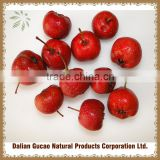 100%natural HAWTHORN BERRY extract powder