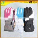 Custom Logo Band Waterproof Winter Outdoor Sport Glove