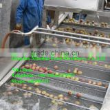 automatic high pressure washer/commercial fruit vegetable washer/vegetable washing machine prices