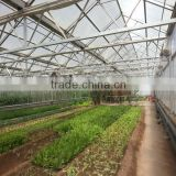 PC plastic greenhouse watering drip irrigation system