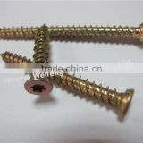 High quality galvanized concrete screw, torx-30 screw China manufacture,supplier,exporter