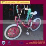 cool Children bike bmx bike with beautiful color for 10years old girls child