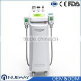 CE FDA approved new Advanced 10.4 inch cooling temperature cryopolysis body slim weight loss machine for sale