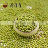 green mung bean high purity 2016 crop mung bean green bean