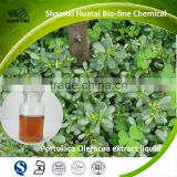 < HUATAI>ISO Approved portulaca oleracea extract 1% Colored & colorless liquid