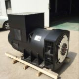 Alternator/Generator Head 1 mw
