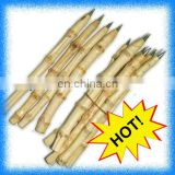 eco-friendly bamboo root ball pen
