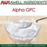 Effective nootropic choline supplement Alpha GPC