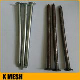 40D 5inches length galvanized common wire nails
