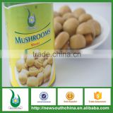 Champignon mushroom in brine size whole/slice/pns 400g/800g/2840g for canned food distributors