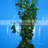 Elegant in smell classical cut foliage flower for decoration
