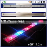 60W full spectrum 380nm-840nm for garden greenhouse light emitting pink color led grow light