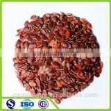 Top quality Xinjiang hami melon seeds