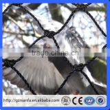 virgin hdpe anti bird net white colour for agricultural or fruits trees with uv(Guangzhou Factory)