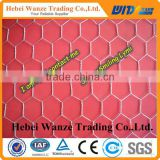 Hexagonal wire netting / wire mesh panels / aviary wire mesh for factory