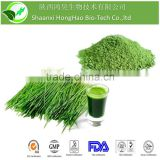 ISO & kosherCertificated Light Green Powder For Lose Weight Organic Barley Grass Powder