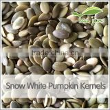 roasted and salt pumpkin seeds snow white