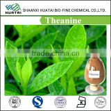 Pure natural Green Tea Extract / L- Theanine