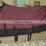 stable blanket,equestrian,equestrian equipment