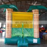 High quality and cheap bouncy castle NB028