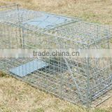 Collapsible One-door Live Animal Cage Trap For Raccon,Stray Cat,Groundhog, Opossum,Armadillos