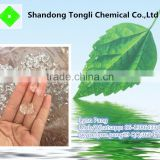 Water retention polymer for plant and crops