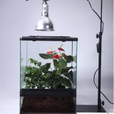 Reptile Glass Enclosure