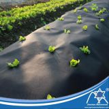 PP Spun-Bonded Non-Woven Mulch Film for Vegetable Protect