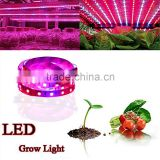 DC12V 300CM 60led/mSMD5050 Flexible Plant Growing led Strip Light