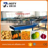 Tomato Grading Machine/washing and waxing machine