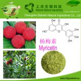 Myricetin/Bayberry bark extract/529-44-2/Anti-oxidation