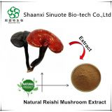 Factory Provide Health Plant Triterpene Reishi Mushroom Extract