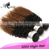Burmese and Cambodia ombre deep curly human hair/ hair dye human hair extension/100% real virgin indian hair wholesale