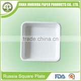 Disposable bio-degradable eco-friendly Party Russia Square Tray with sugarcane and wheatstraw pulp