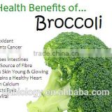 Broccoli seeds plant extract Broccoli Extract, Broccoli Sprout Extract, Sulforaphane 0.5%-98% CAS No.: 4478-93-7