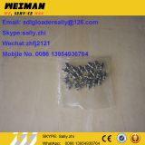 SDLG orginal grease nipple, 4030000065, sdlg wheel loader parts  for SDLG wheel loader LG936L