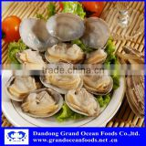 frozen boiled baby clam meat