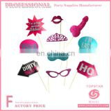 Hen Party 10pcs cheap props photo prop