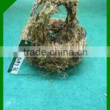 natural bulk inexpensive willow wicker basket with handles
