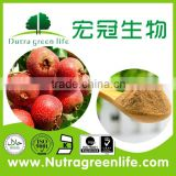 9.8USD Promoting blood circulation and removing blood stasis Hawthorne Berry Extract Flavones 5% HPLC Pharmaceutical grade
