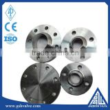 DIN standard carbon steel and stainless steel PL/WN/SO/BL flange