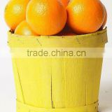 "New Year 2017 Special Offer - Mandarin ""Kinnow"" Orange, Citrus fruit from Pakistan"