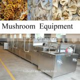 mushroom belt drying machine