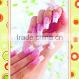 Decorative Painting pictures/nail posters nail art designs